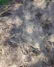 Gratis zand / grond / tuinaarde