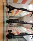 Ninebot Segway ES4 Elektrische Step