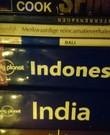 Reisgids indonesie