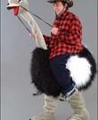 Feestkostuum Struisvogel