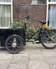 ELEKTRISCHE Nihola Bakfiets Dog / Electric Cargo Bike Dog