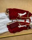 Luxe sinterklaaspak met staf, boek, ketting en handschoenen