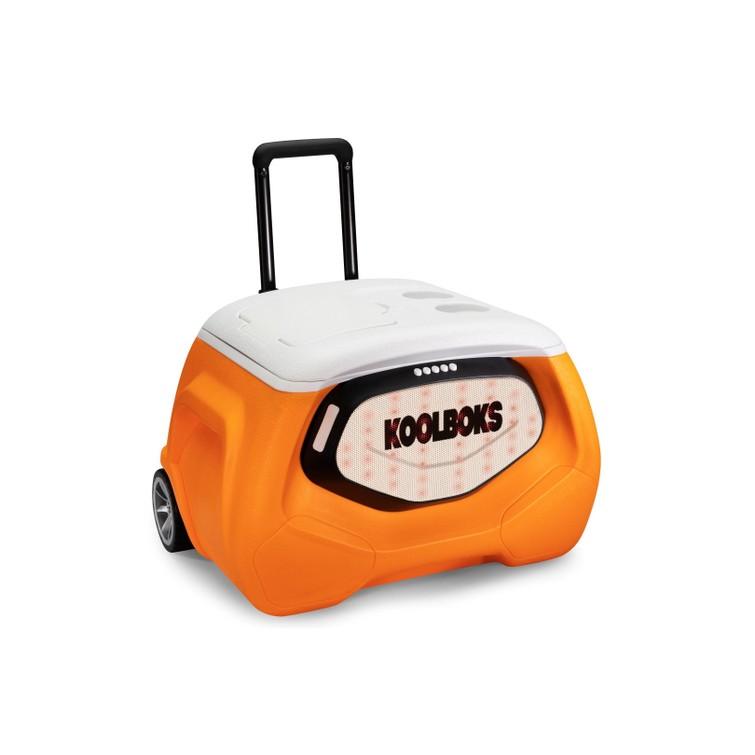 Multifunctionele Koelbox Koolboks Speaker + Powerbank