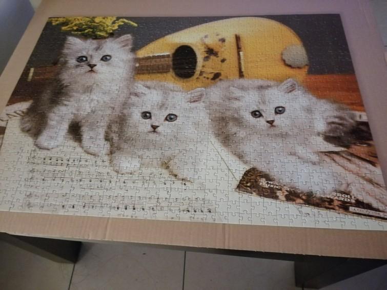 Puzzel 1000 stukjes