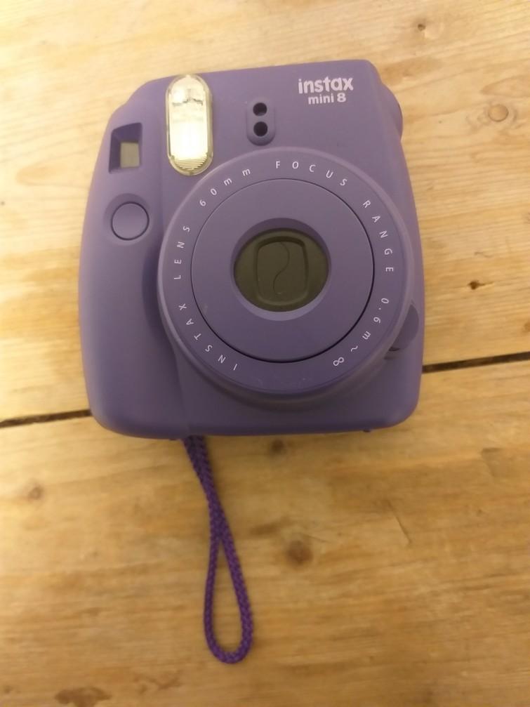 Poloraid camera