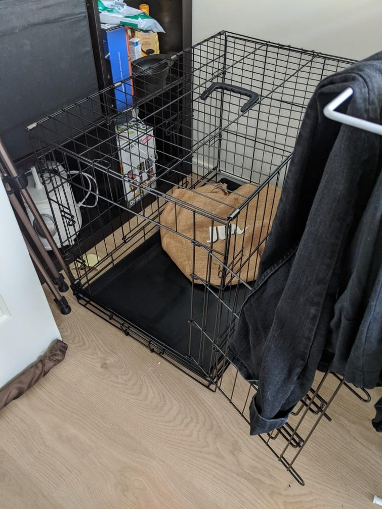 Honden/dierenbench