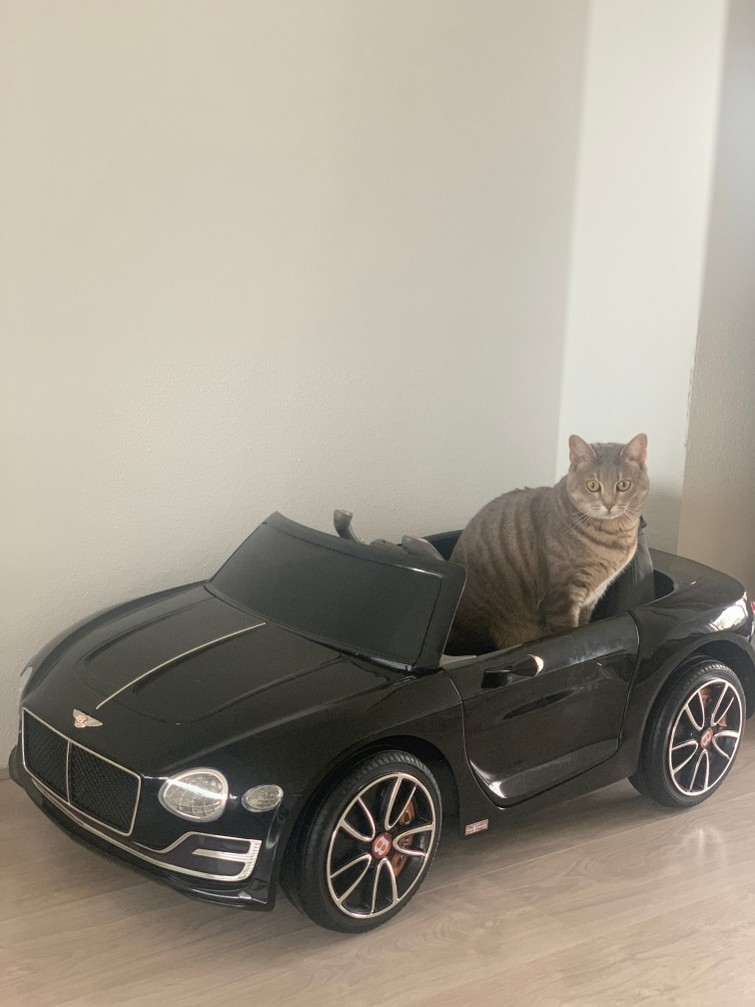Kinder auto
