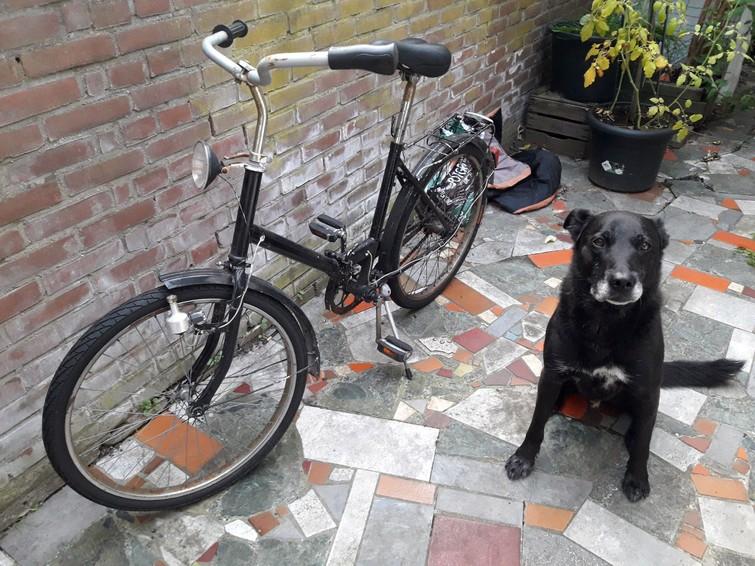 Vouwfiets. Oud maar fietst.