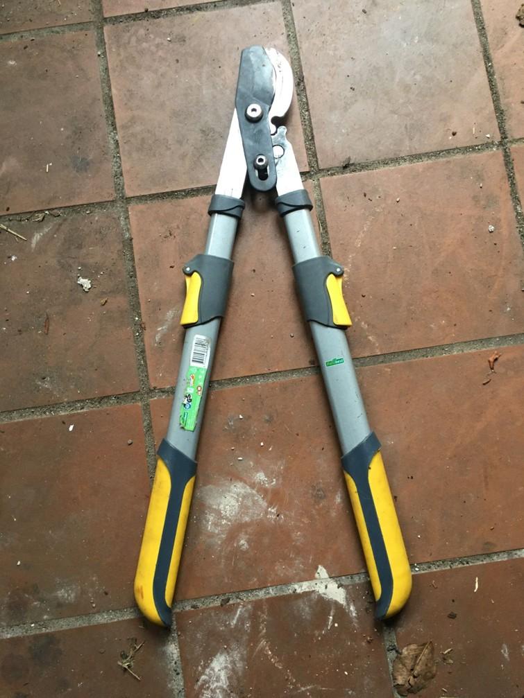 boom/takkenschaar ( Max 5 cm. )